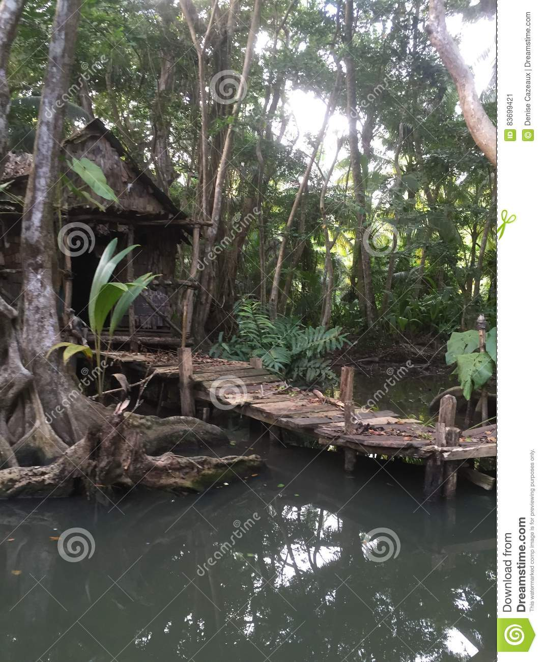 Dominica Water- Set for pirates of the Caribbean