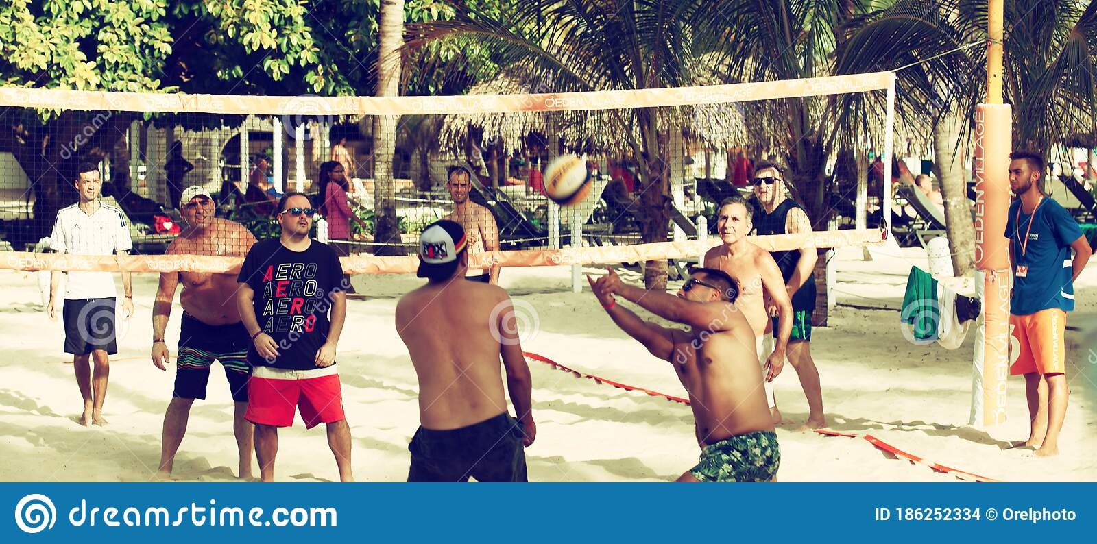 Group Of Friends Is Playing Volleyball At Sunny Day Stock
