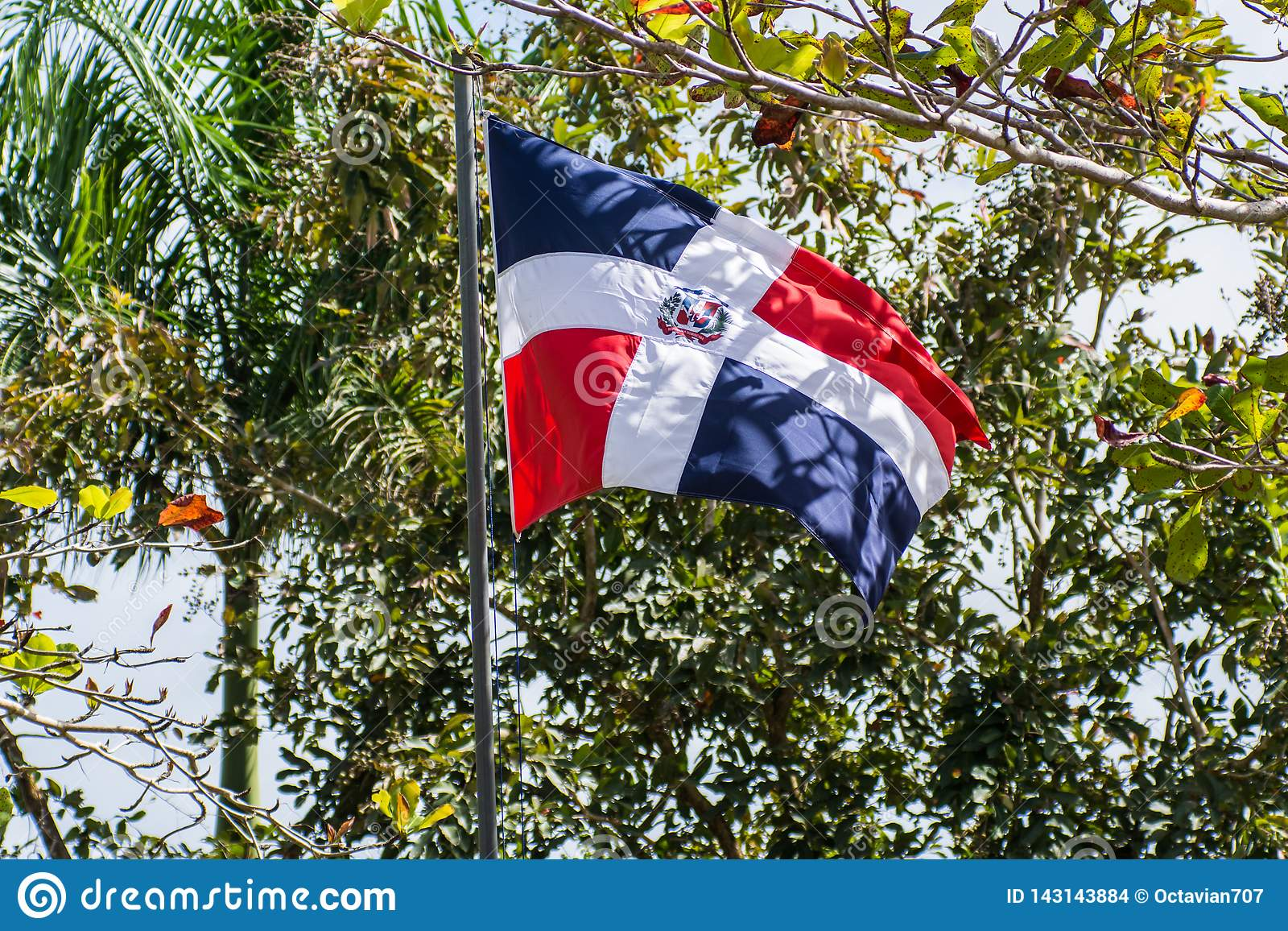 Dominican Republic flag on pole weaving