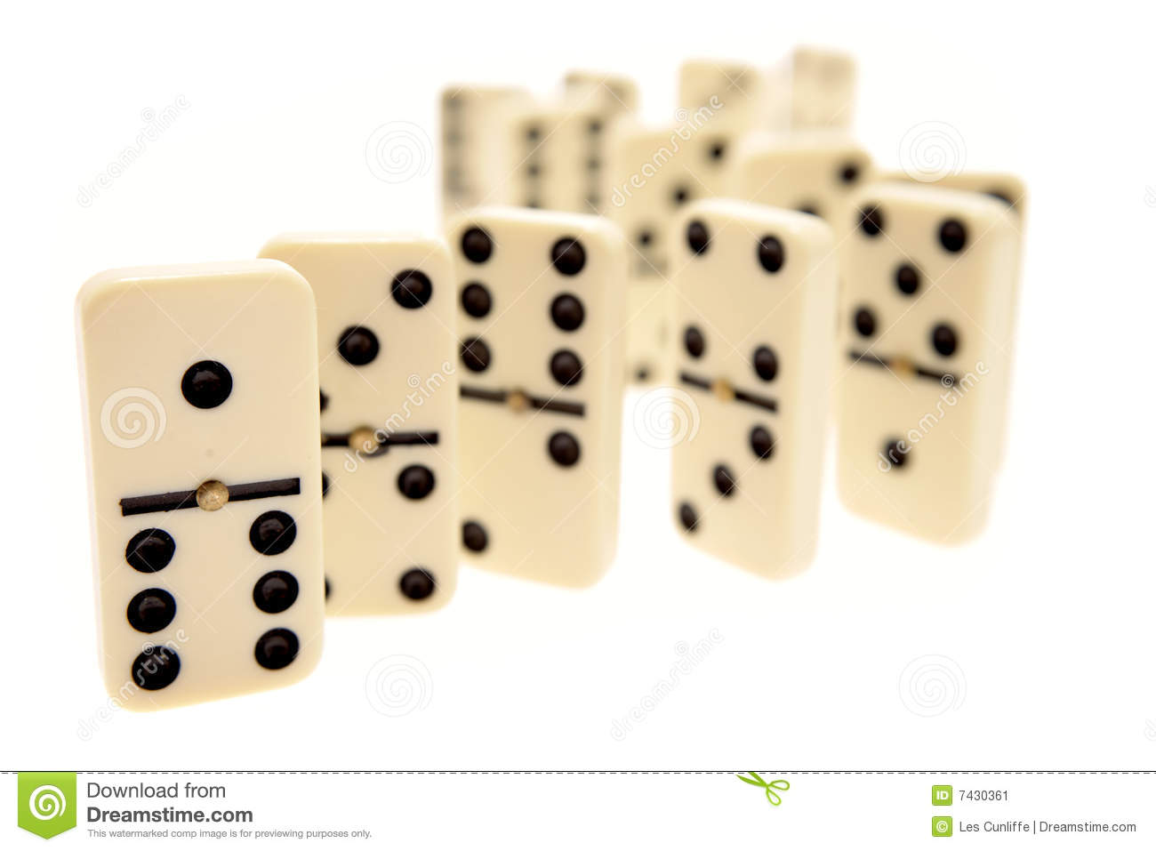 Dominoes lined up and ready to knock down. .