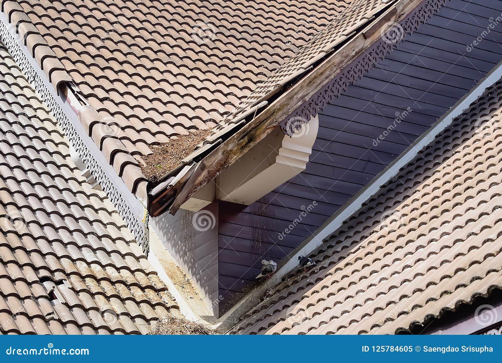 Dommages à la maison de toit après montée subite de tempête