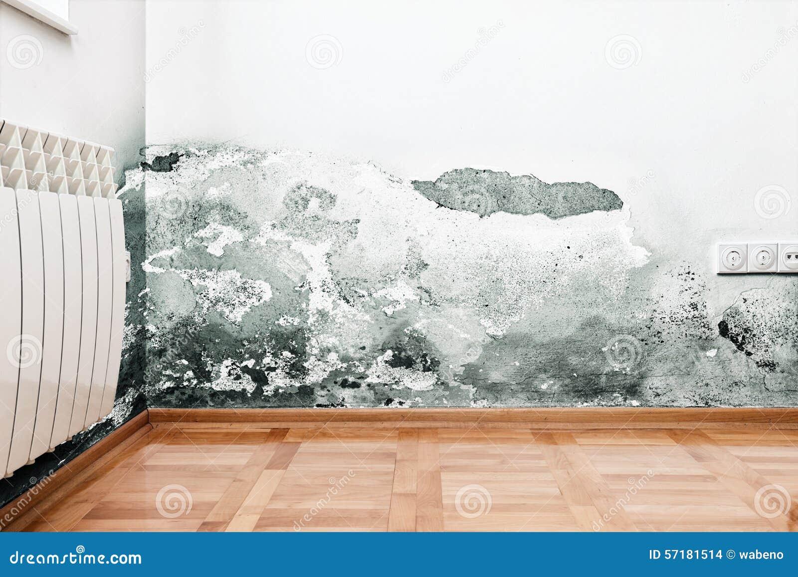 Humidité Dans Une Maison dommages provoqués par humidité sur un mur dans la maison