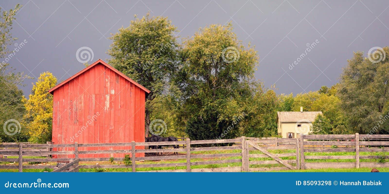 Domowa stajnia i ogrodzenie