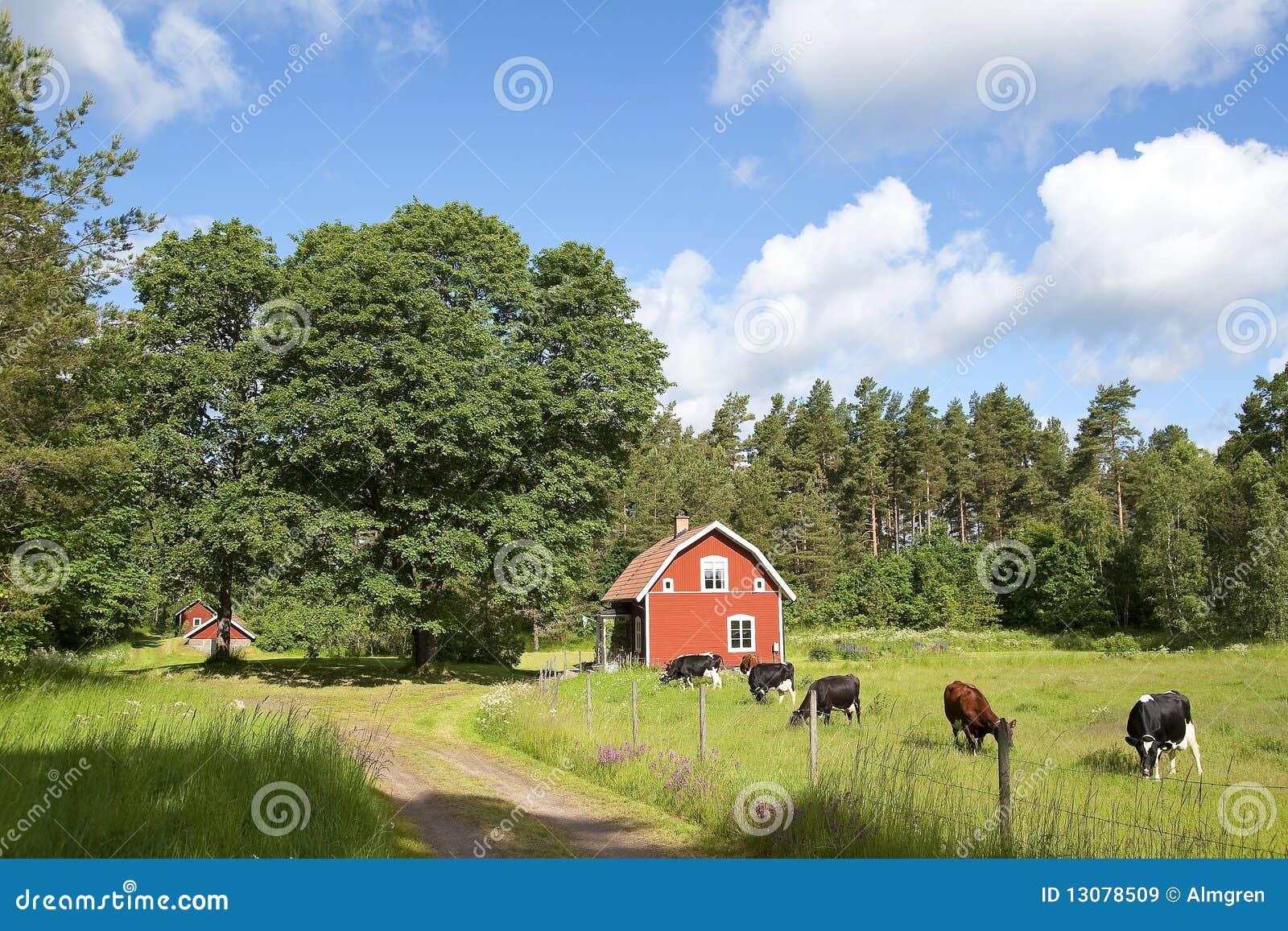 Domowej idylli czerwony szwedzki drewniany