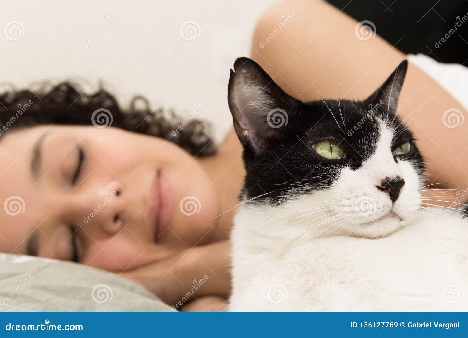 Domowy czarny i biały kota i kobiety właściciela dosypianie w tle Pojęcie spokój, pokój