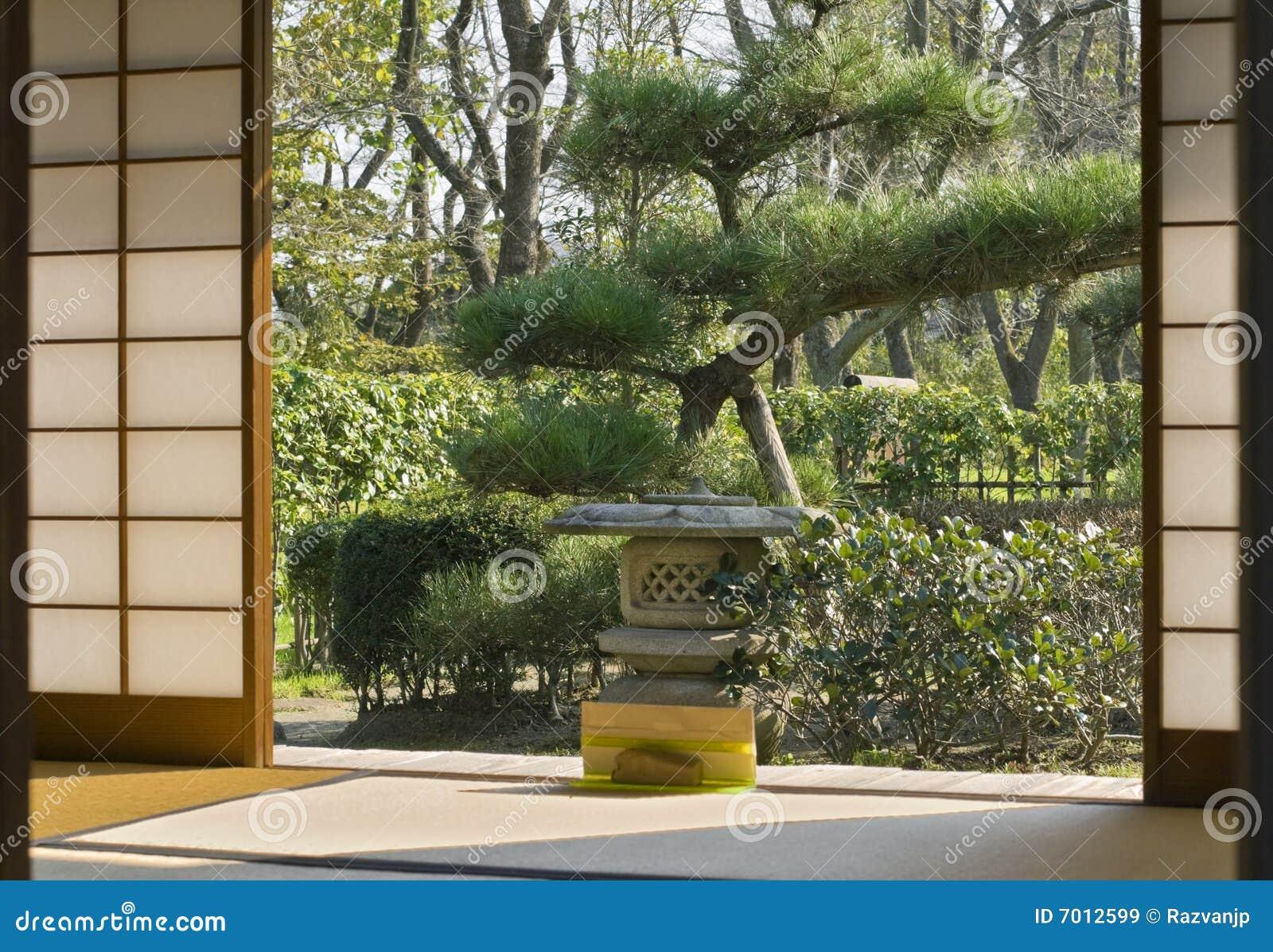 Domowy japończyk