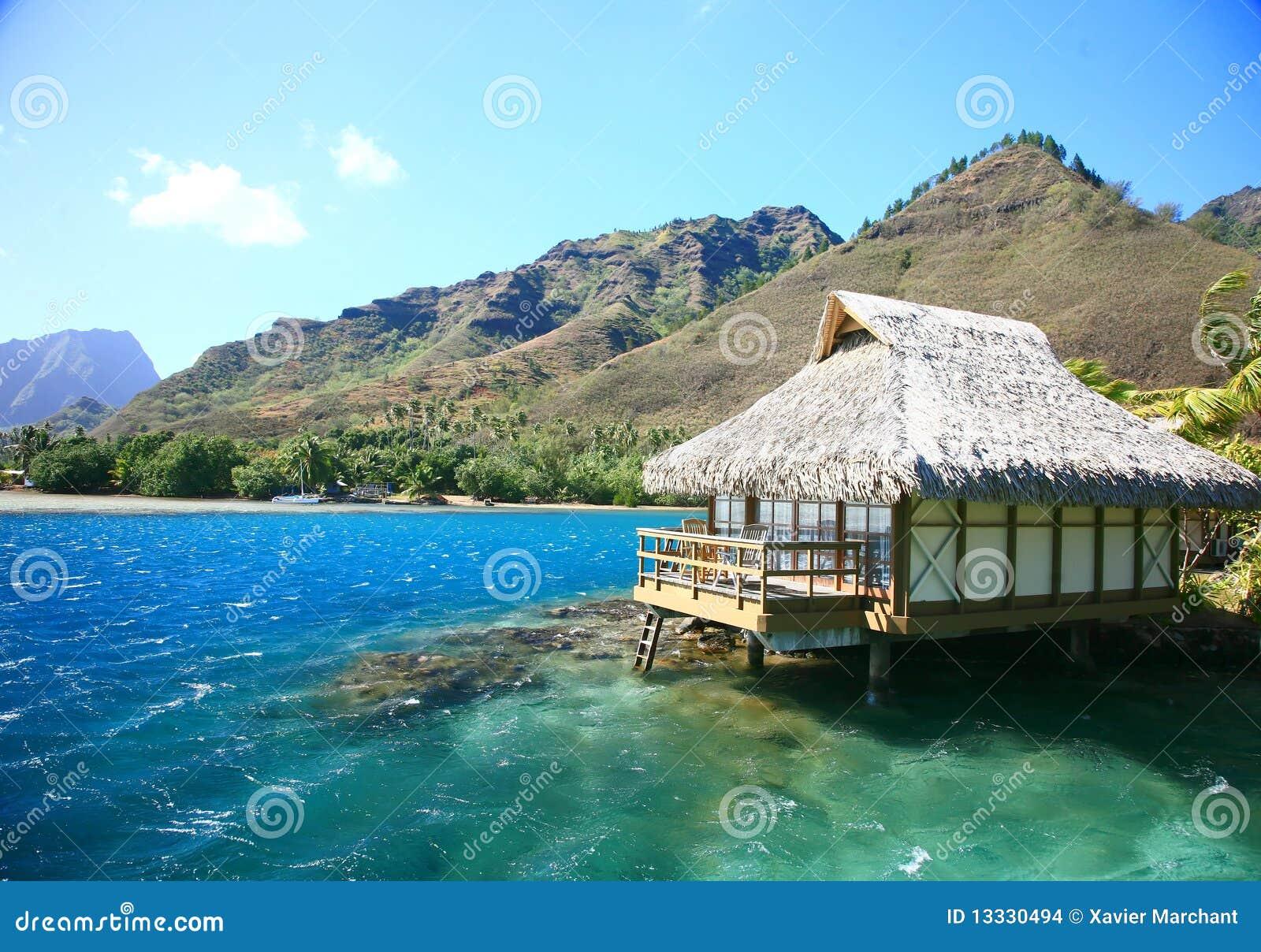 Domowy ocean