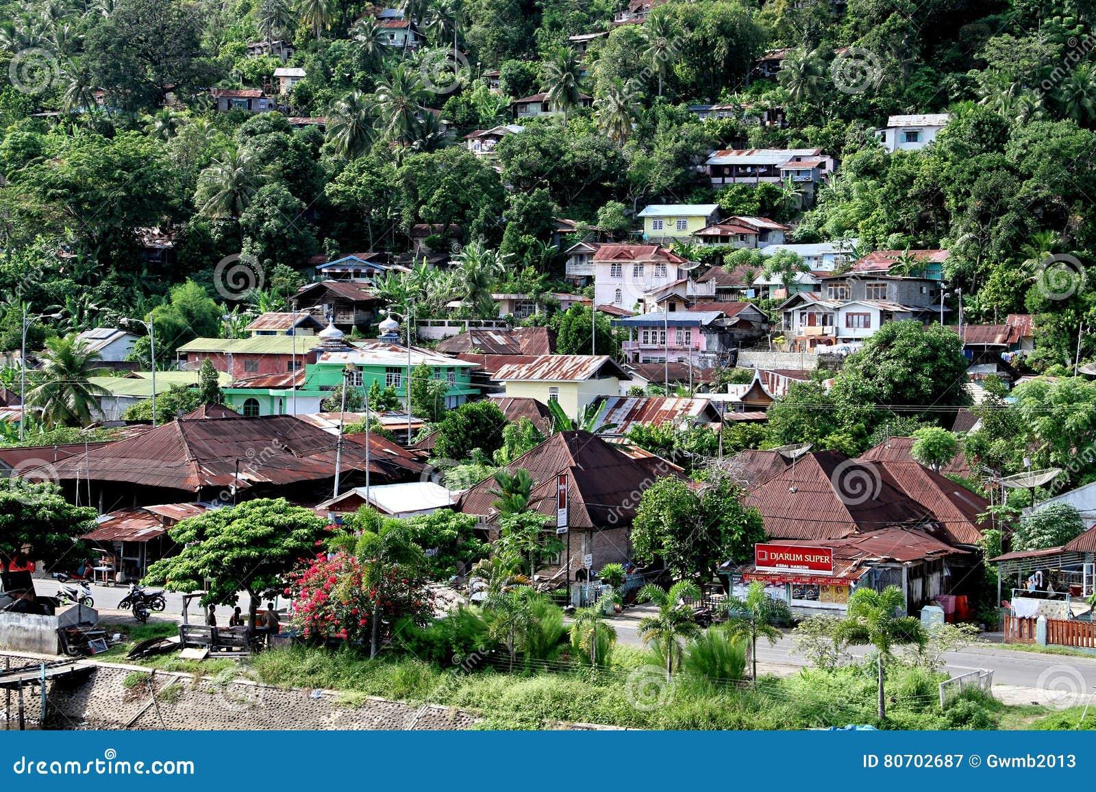 Domy na zboczu przy Padang, Indonezja
