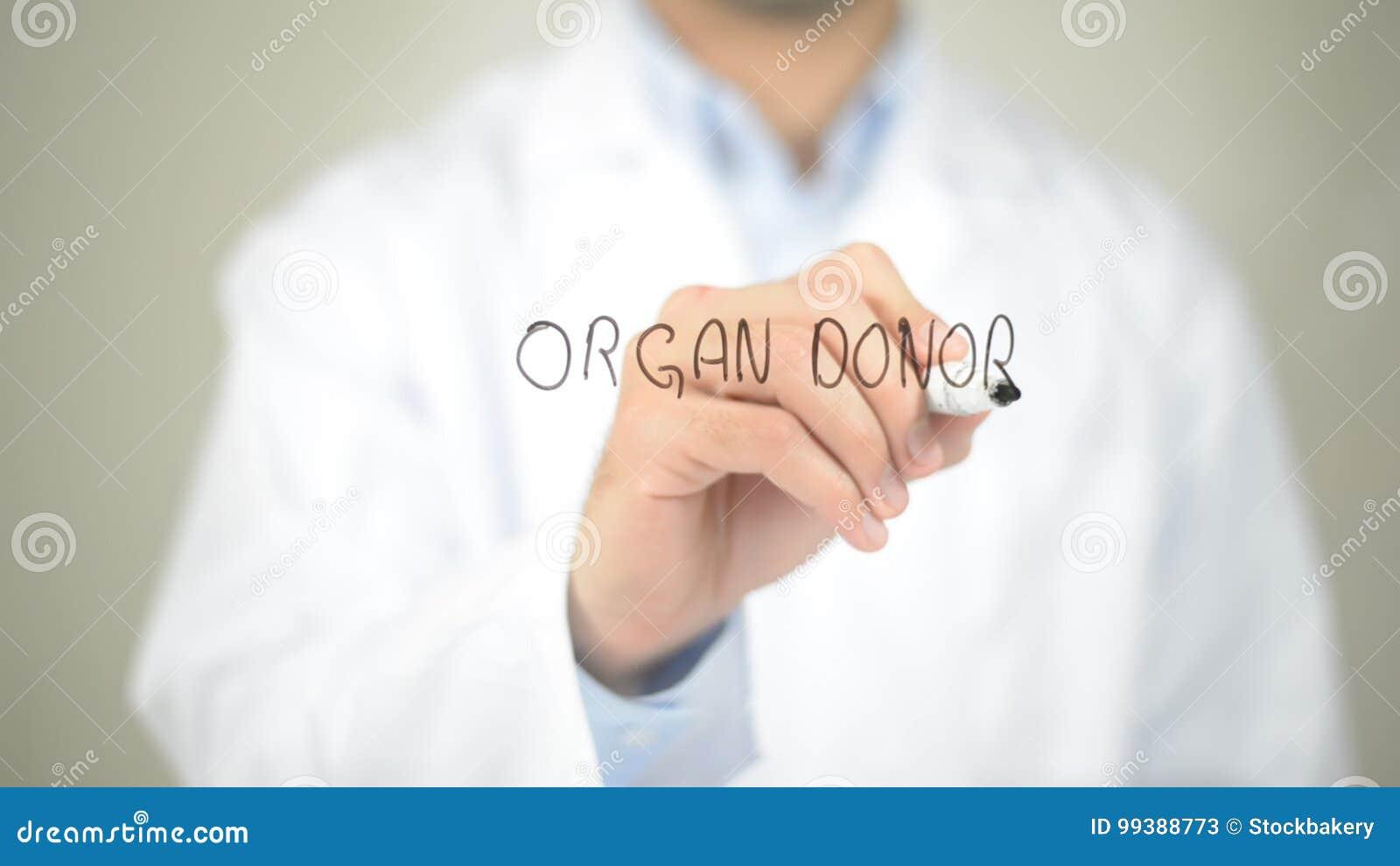 Donatore di organo, scrittura di medico sullo schermo trasparente