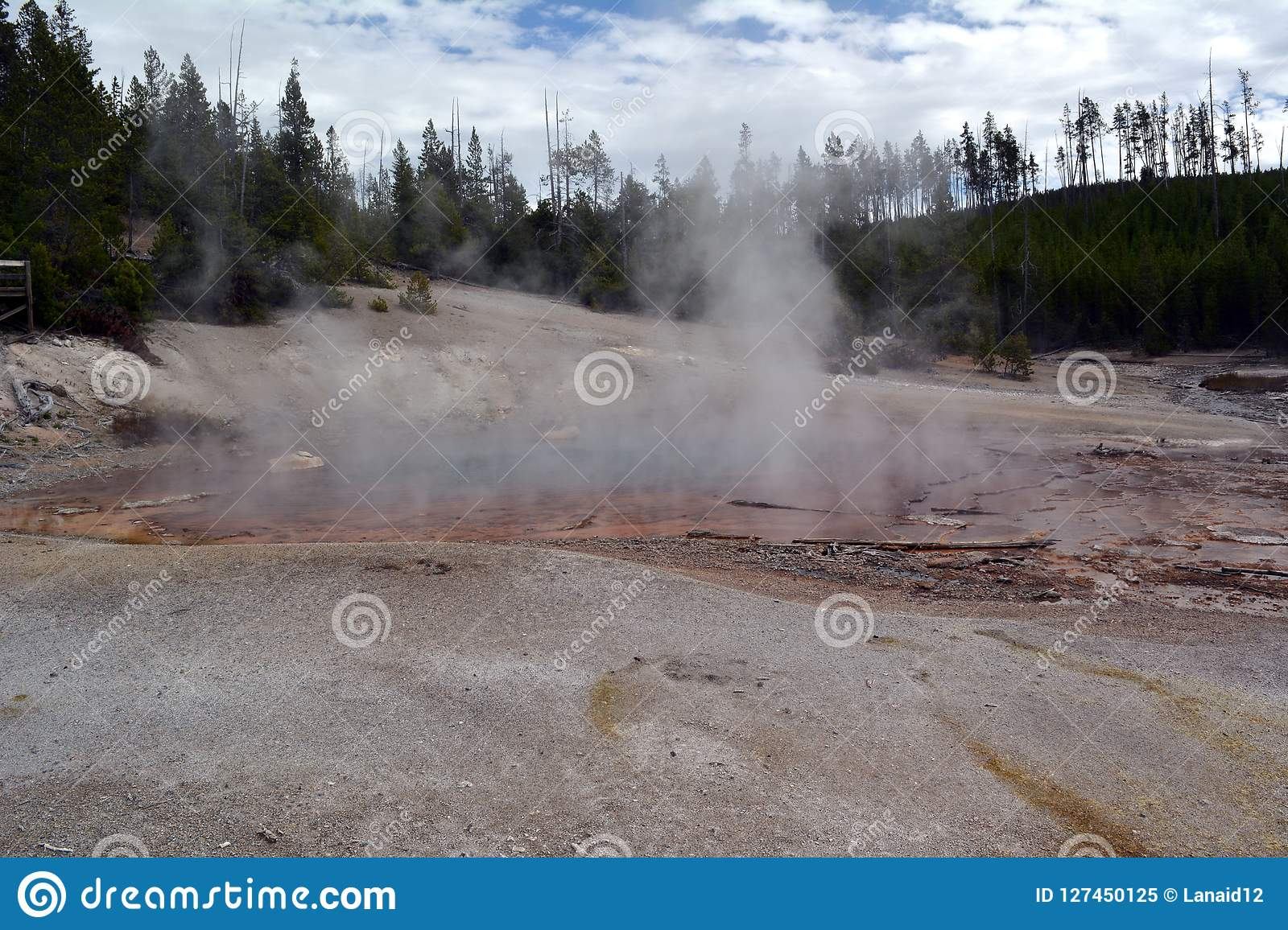 Donkere enge Geiser in Norris Geyser Basin in Park Yellowstone