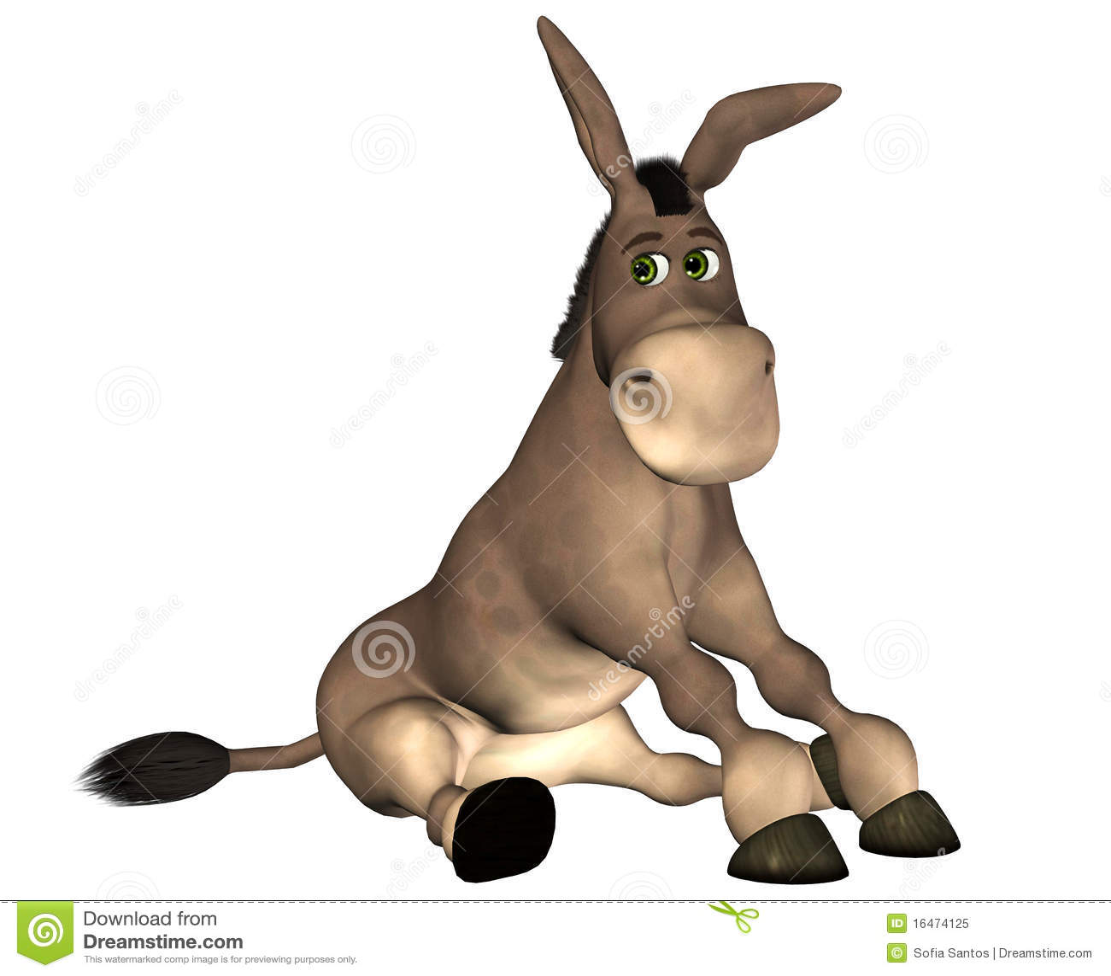 Braying Donkey  YouTube