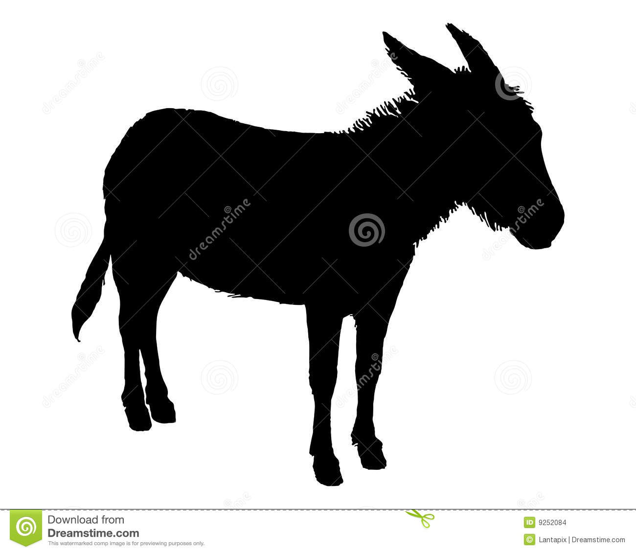 donkey on white stock images image 9252084 Donkey Clip Art Your a Jackass Clip Art