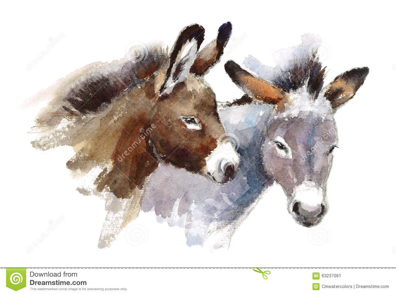 Donkeys Watercolor Animals Illustration Hand Painted Stock ...