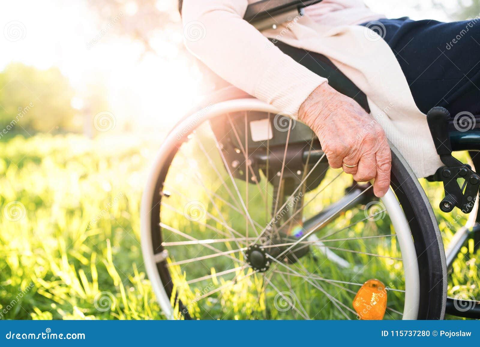 Donna anziana in sedia a rotelle nella natura di primavera