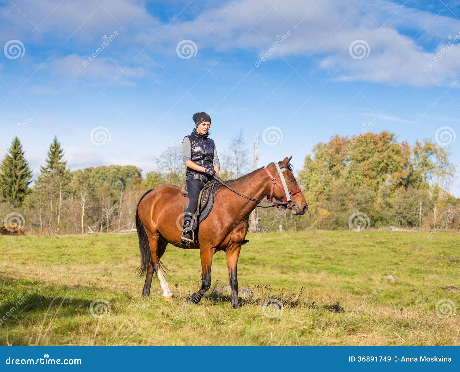 Download Donna Attraente Elegante Che Monta Un Cavallo Immagine Stock - Immagine di cavallo, campo: 36891749