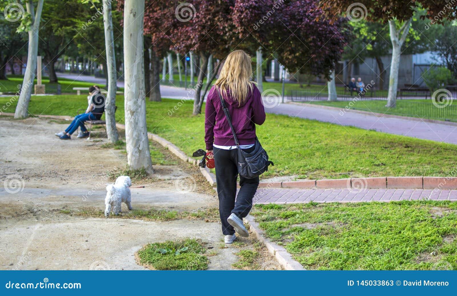 Donna bionda prendere il suo cane per una passeggiata con un guinzaglio del cane sul parco