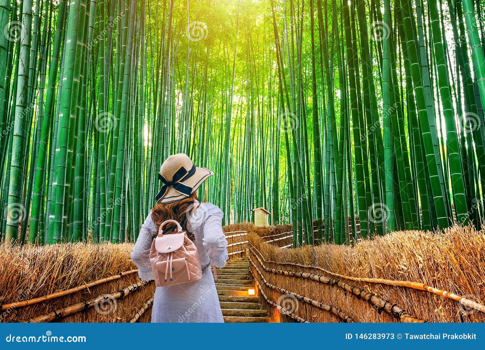 Donna che cammina alla foresta di bamb? a Kyoto, Giappone