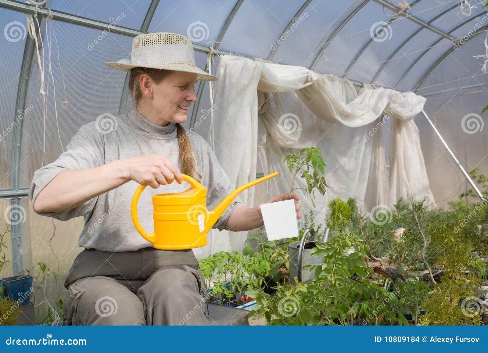 Donna che si siede nella serra con il innaffiare pot for Timer per innaffiare