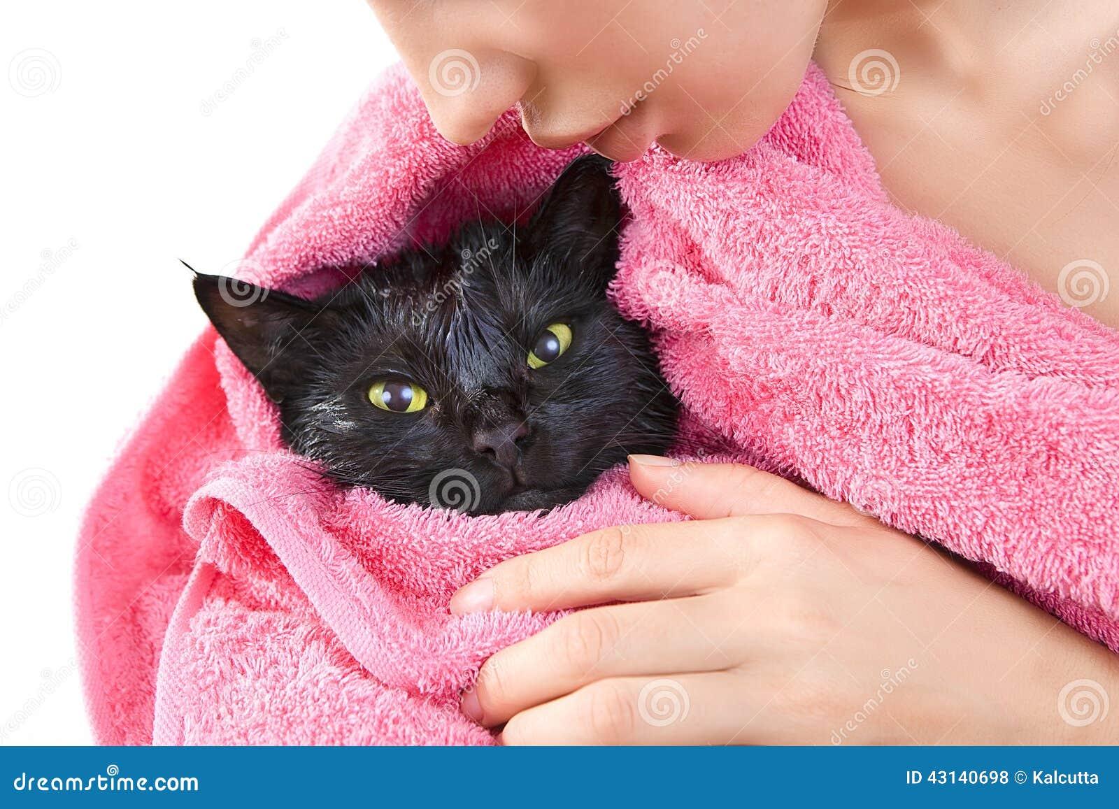 Donna che tiene gatto inzuppato nero sveglio dopo un bagno