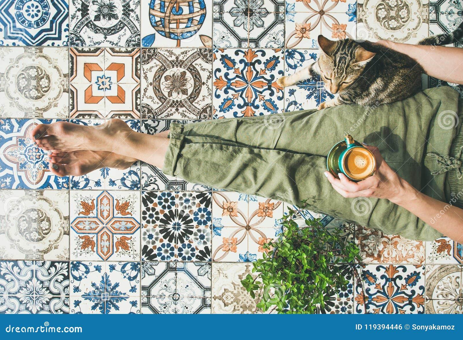 Piastrella con gatto a bordo smerlato con angoli wanli