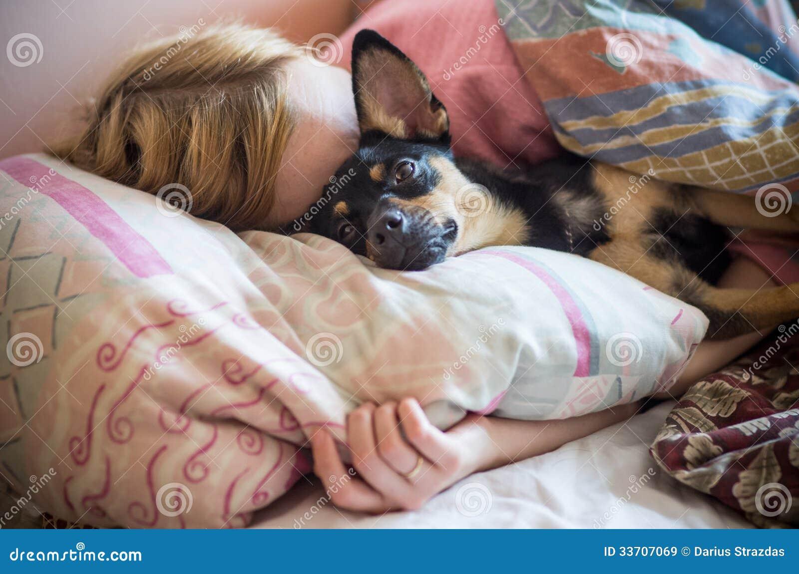 Donna con il cane che dorme nel letto immagine stock immagine di cute animale 33707069 - Cane pipi letto ...