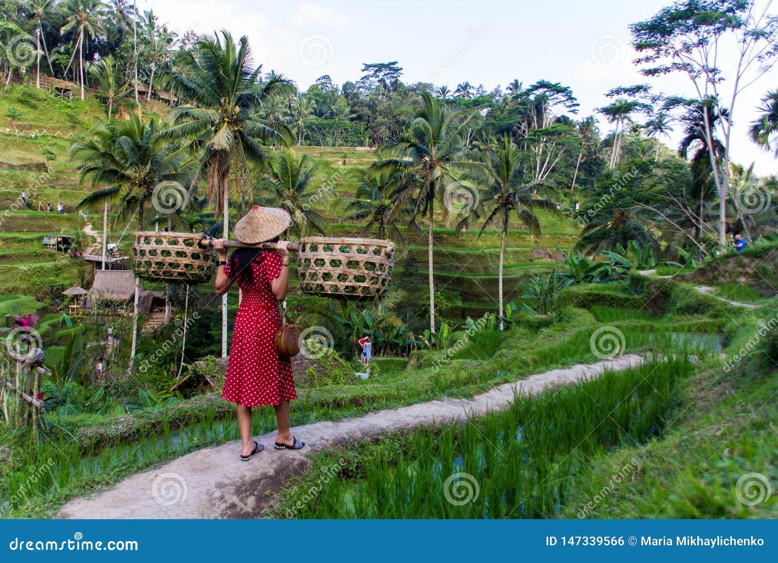 Donna nel rosso con i canestri nelle risaie