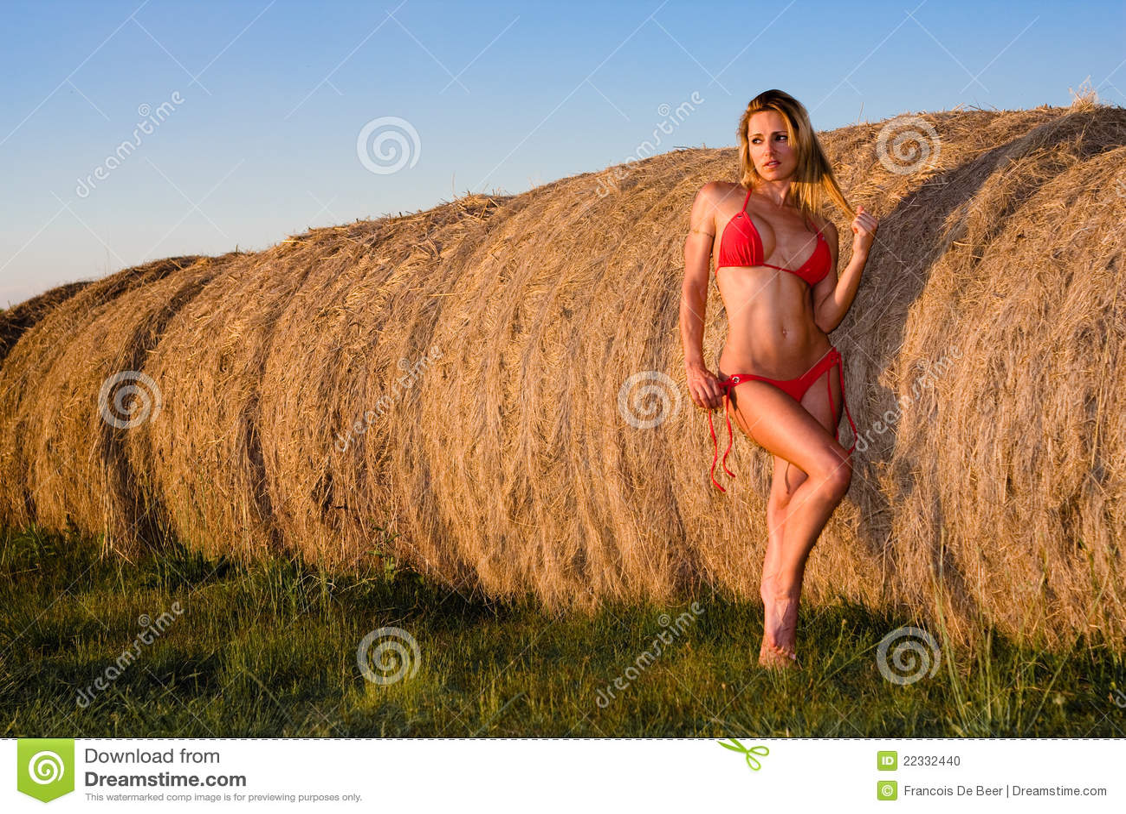 Donna sexy in bikini