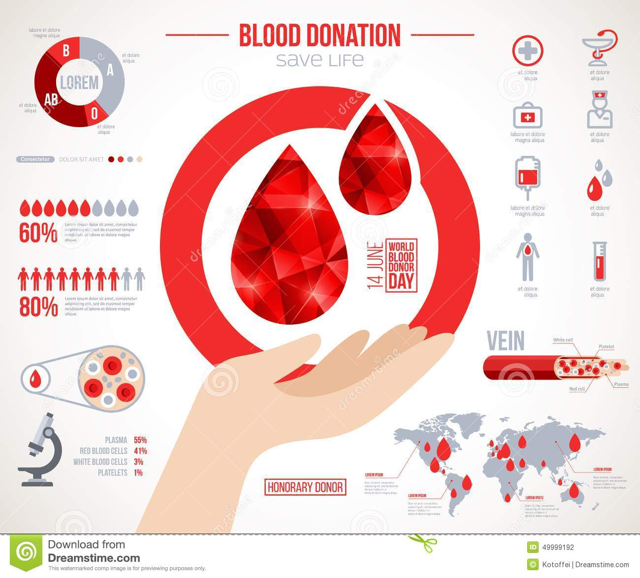 Donor Infographics. Icons Set About Blood Donation Stock Vector ...