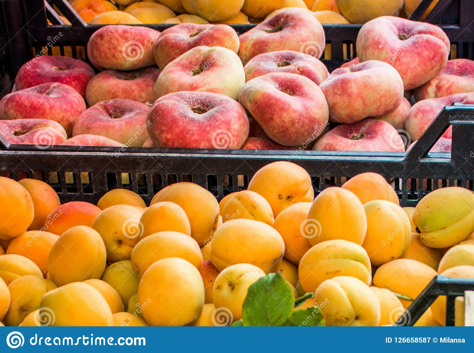 Donut peaches and big apricots in plastic boxes at street fruit market