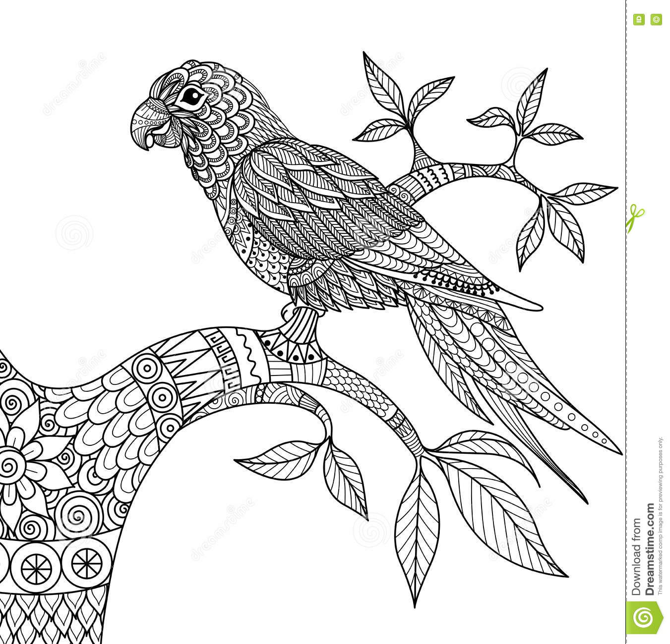 Doodle Design Of Parrot On Branch For Adult Coloring Book Stock Vector