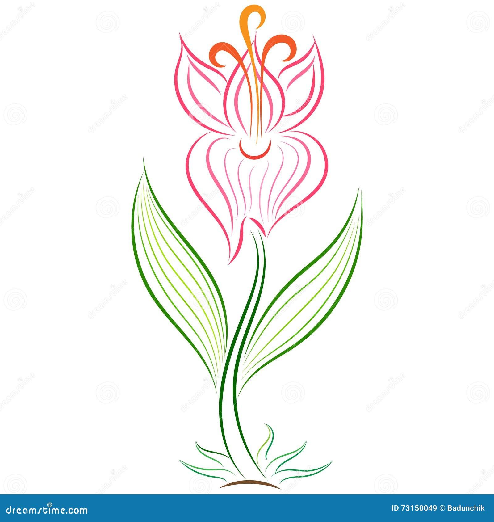 Floral Wallpaper Motifs for Spring