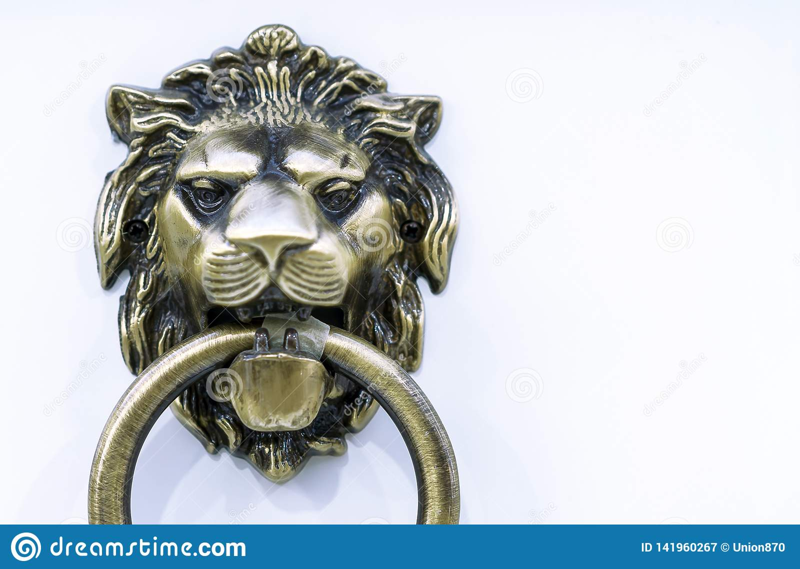 Door handle with a ring in the form of a lion`s head