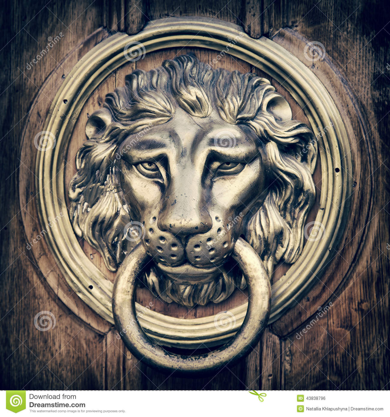 Door knocker, handle - lion head. Vintage stylized. - Door Knocker, Handle - Lion Head. Vintage Stylized. Stock Photo