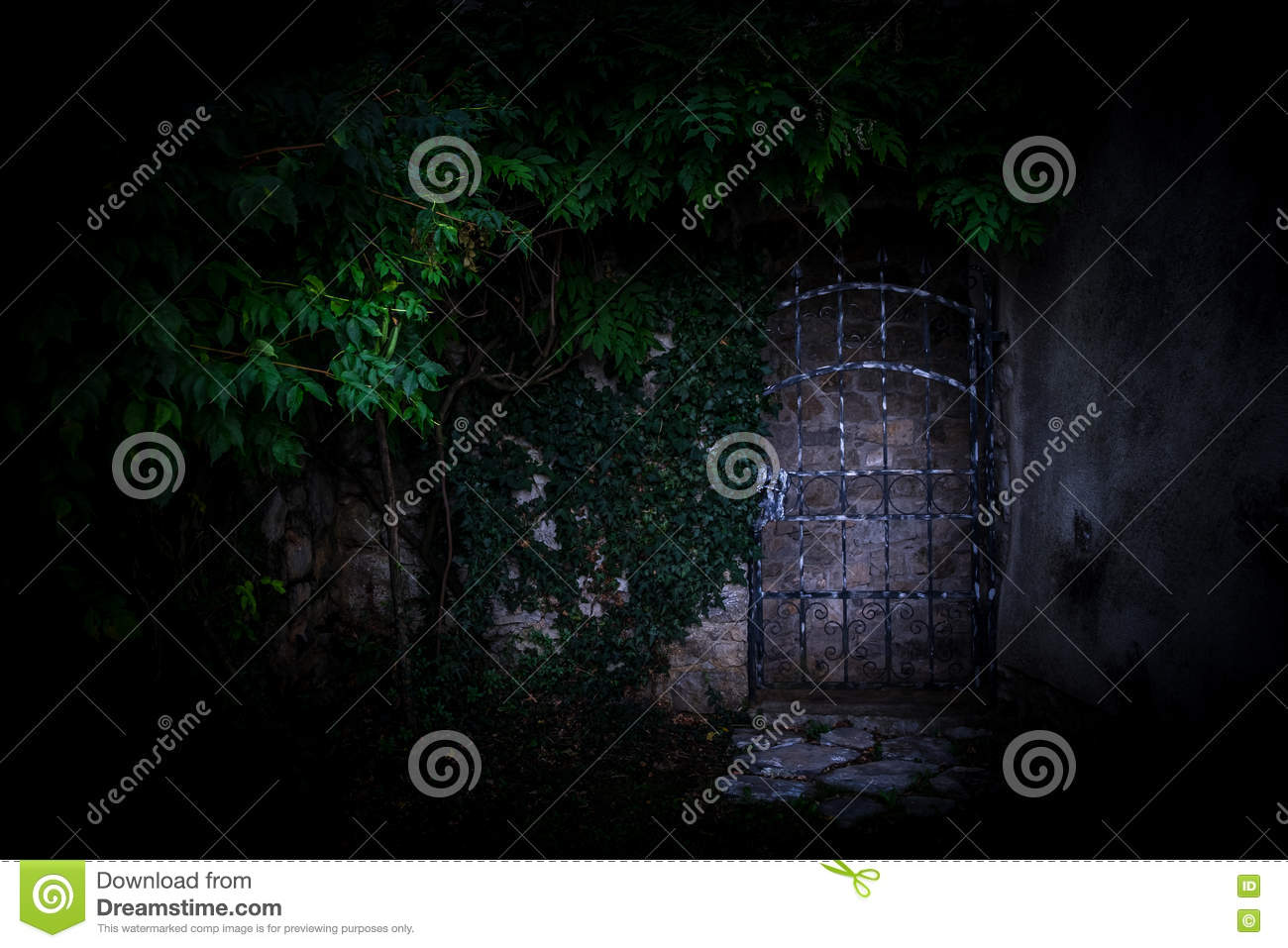 Door In The Wall Covered With Green Ivy Stock Image Image Of