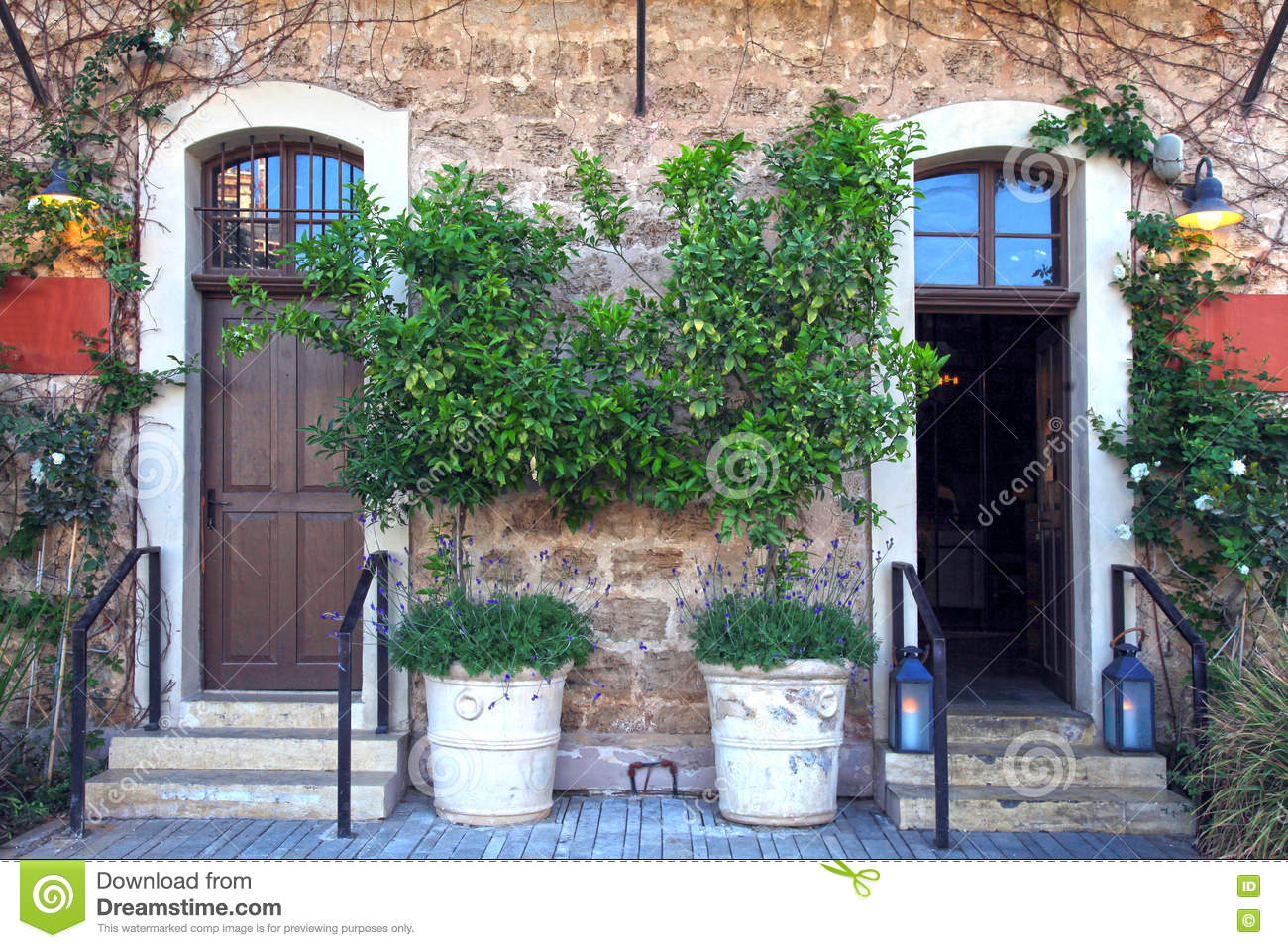 Doors, plants and flowers in a traditional stone mediterranean h