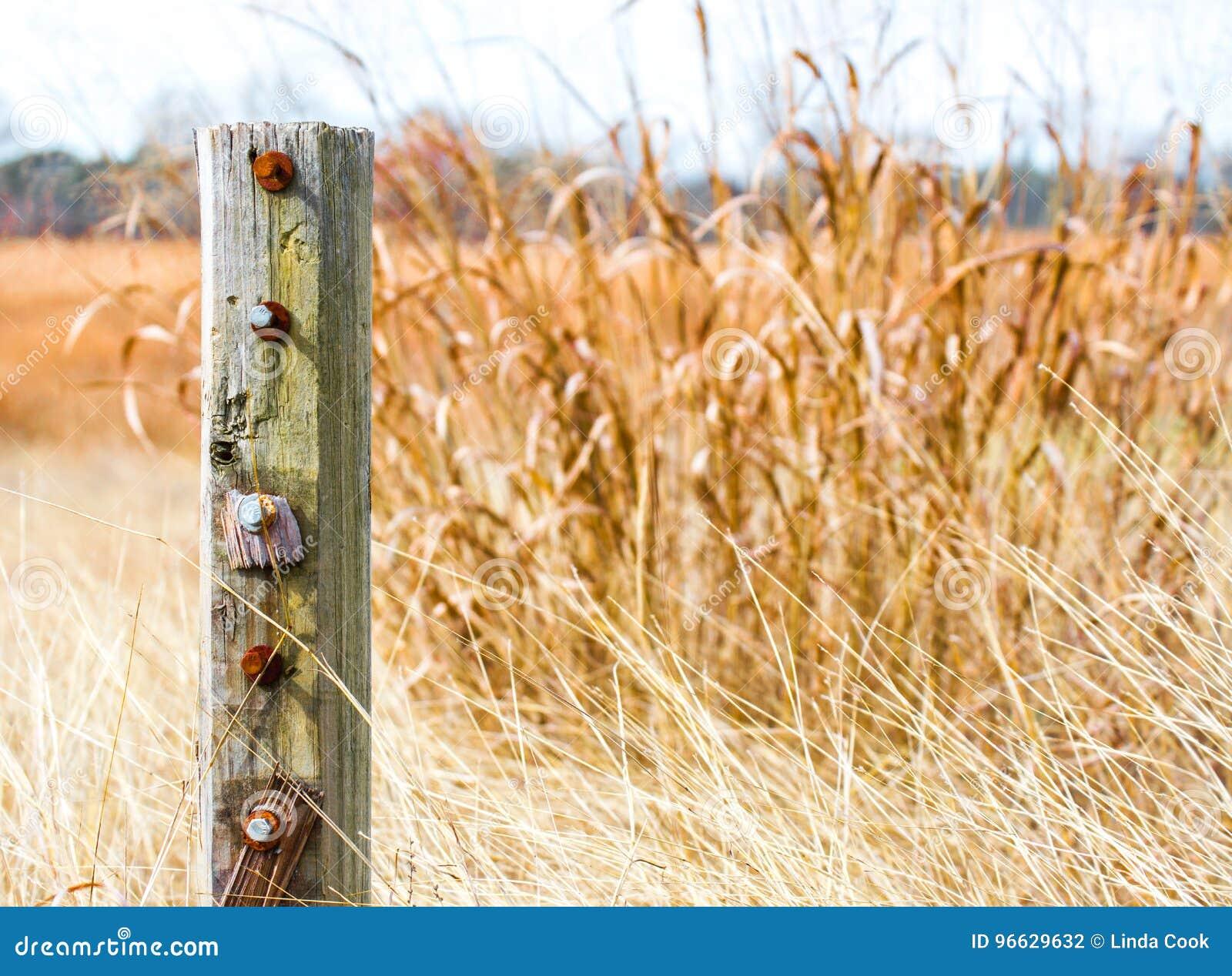 Doorstane houten post in gouden prairiegras in Texas