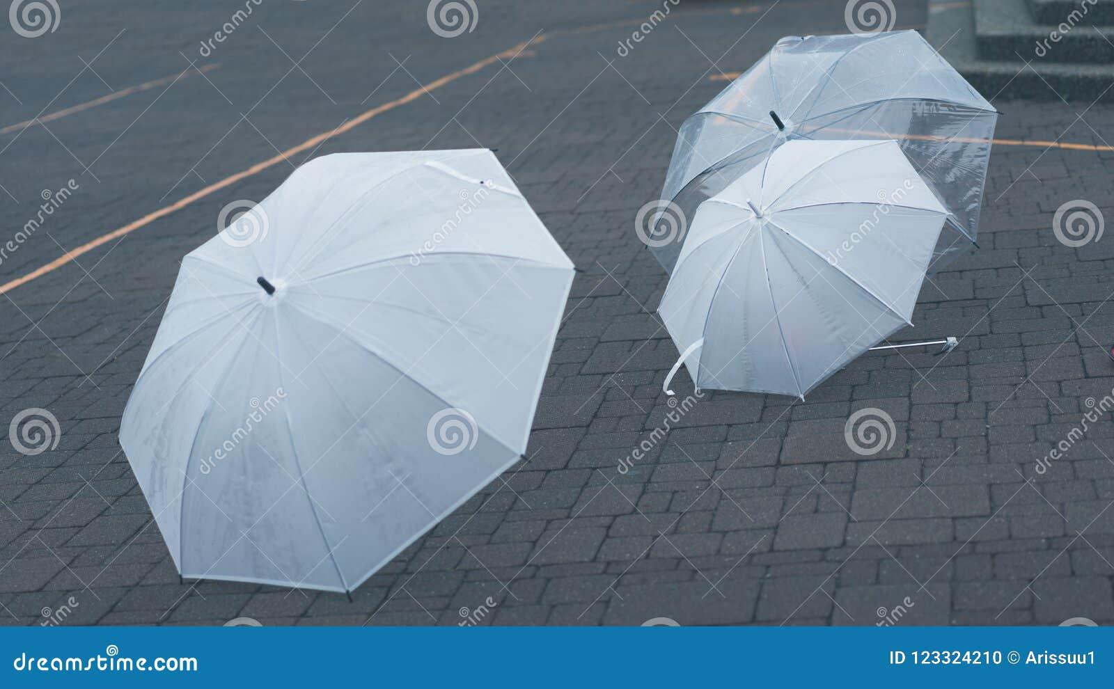 Doorzichtig spruit-door Paraplu op Grond