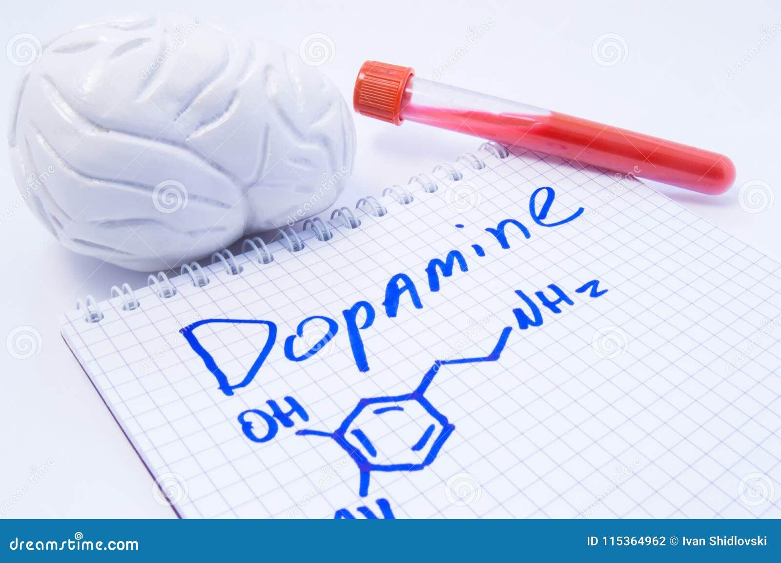 Dopamina del neurotrasmettitore in cervello Modello anatomico del cervello 3D, tubo della prova di laboratorio con sangue e nota,