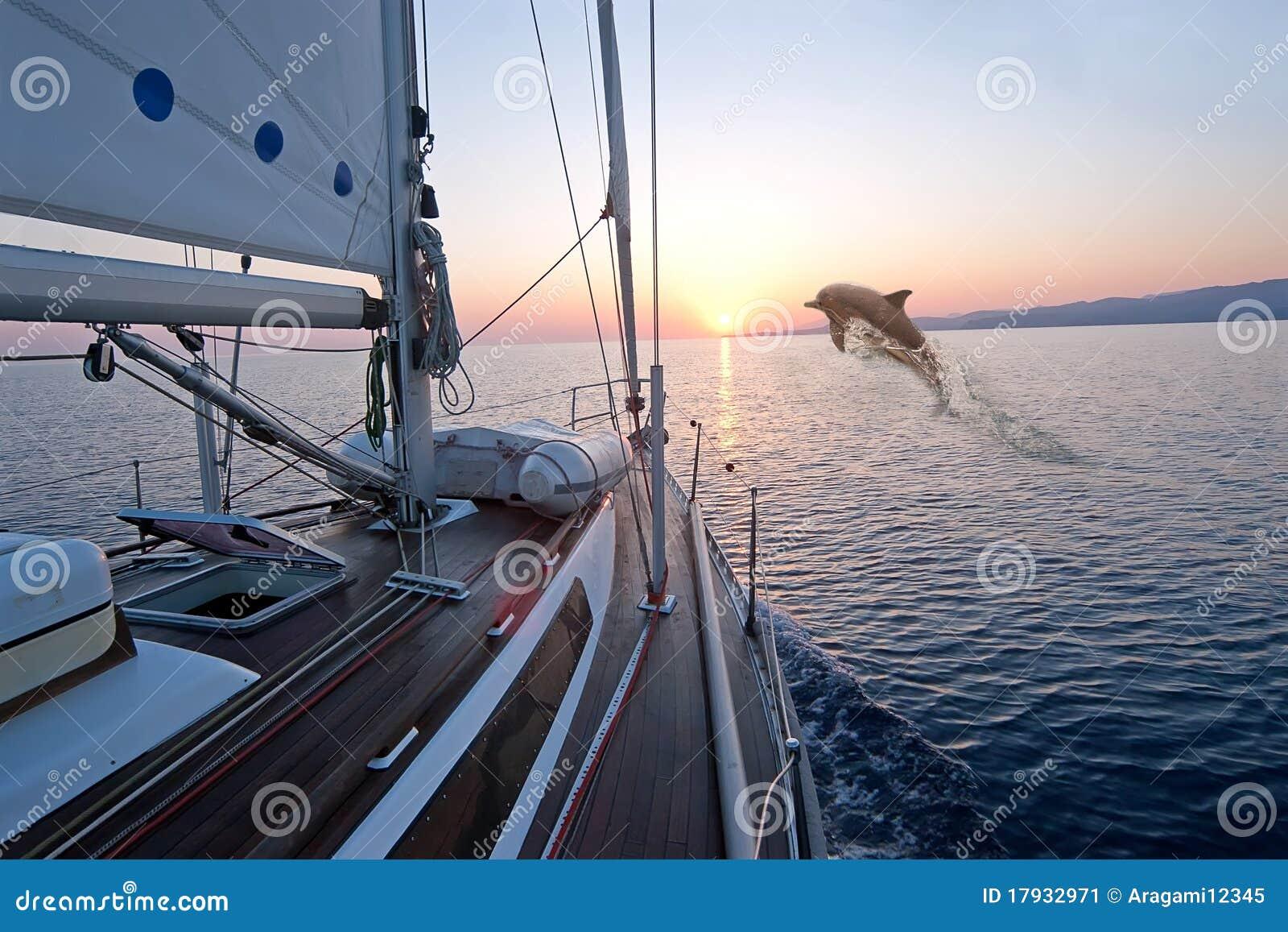 Doplhin jumping near sailing boat