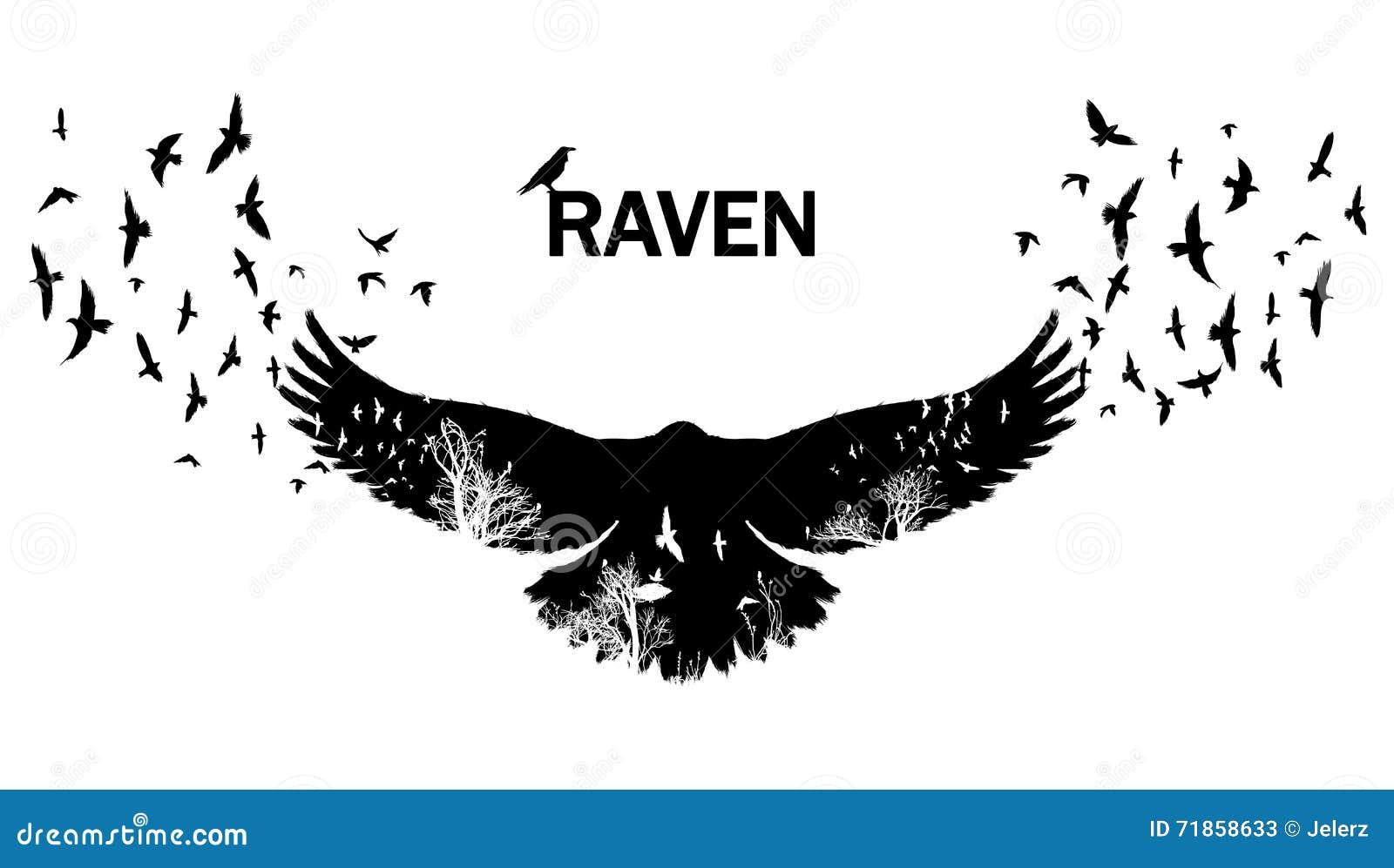 Doppia esposizione volante del corvo