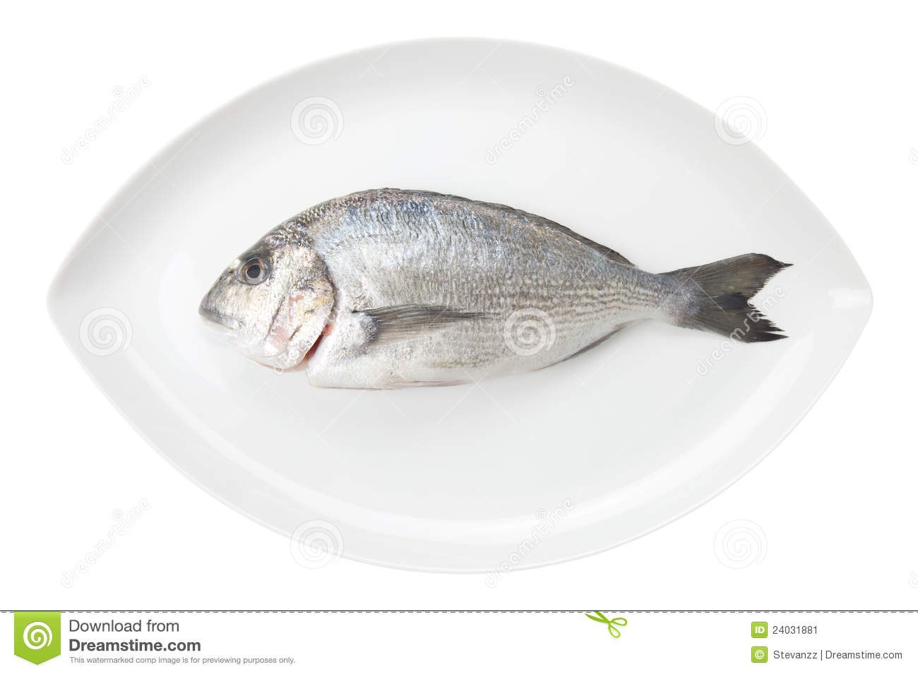 Dorada seafood on a white oval dish. Bream fish.