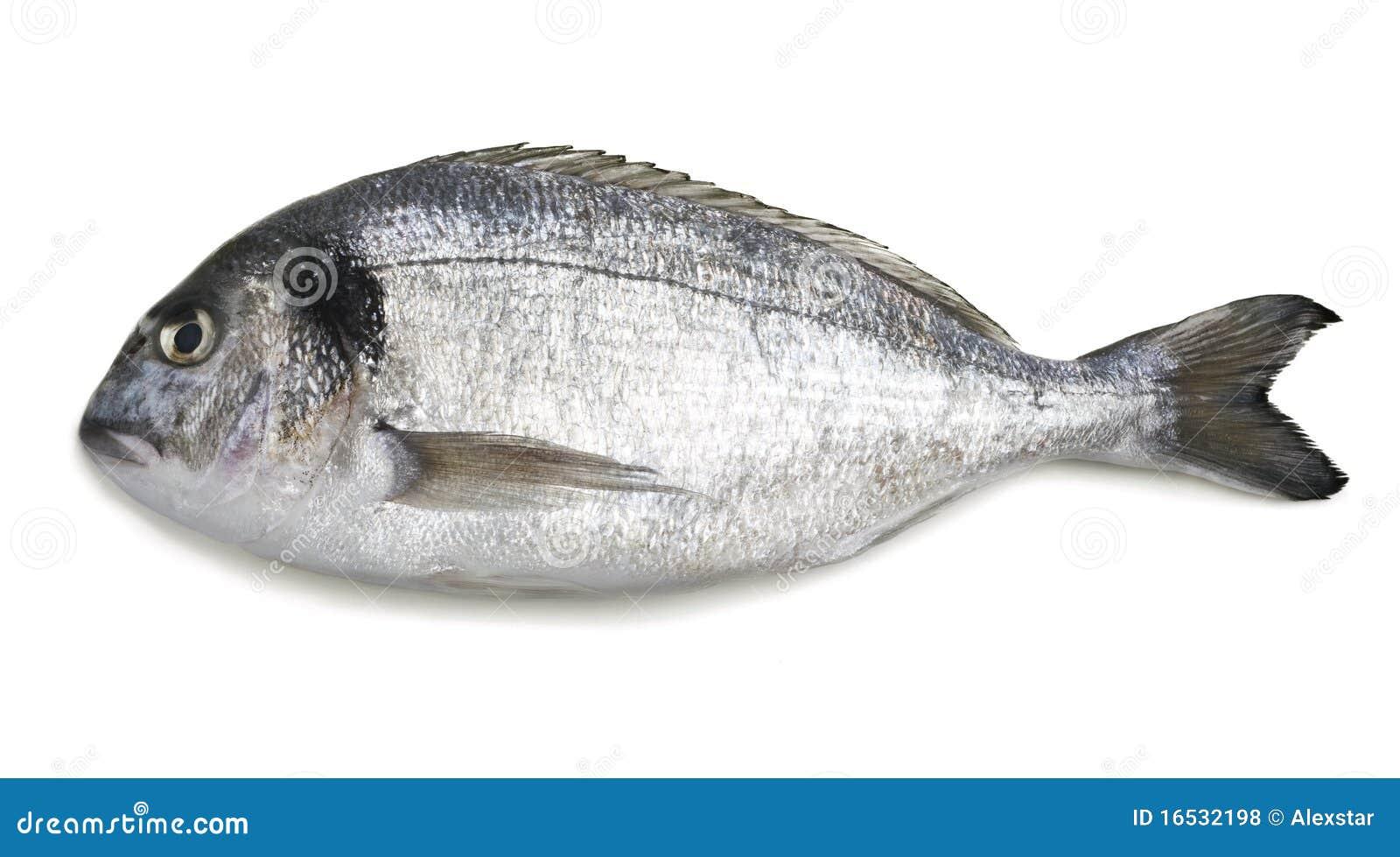 Doradofisk