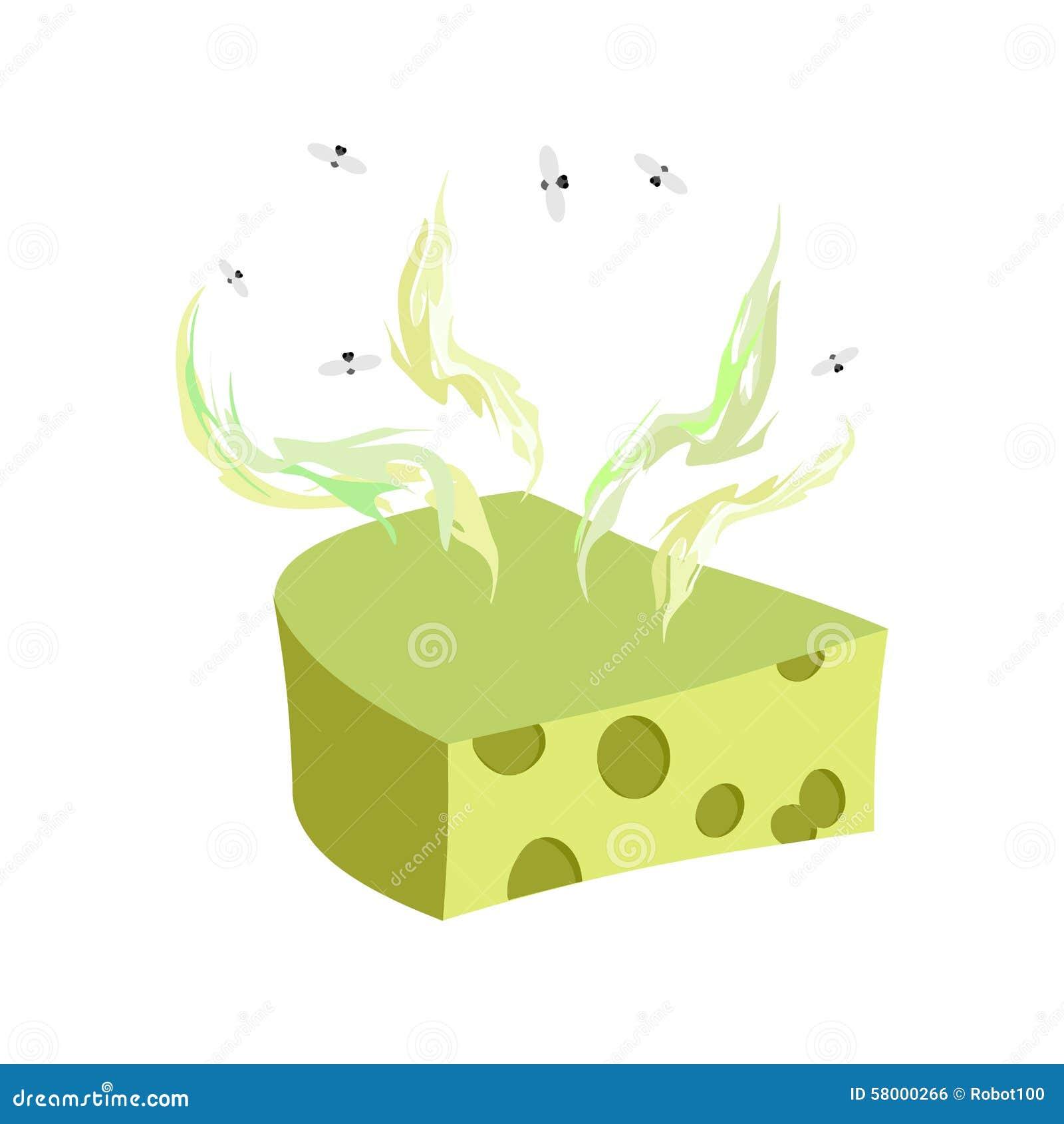 dorblu de fromage morceau de fromage avec une mauvaise odeur et des mouches vecto illustration. Black Bedroom Furniture Sets. Home Design Ideas