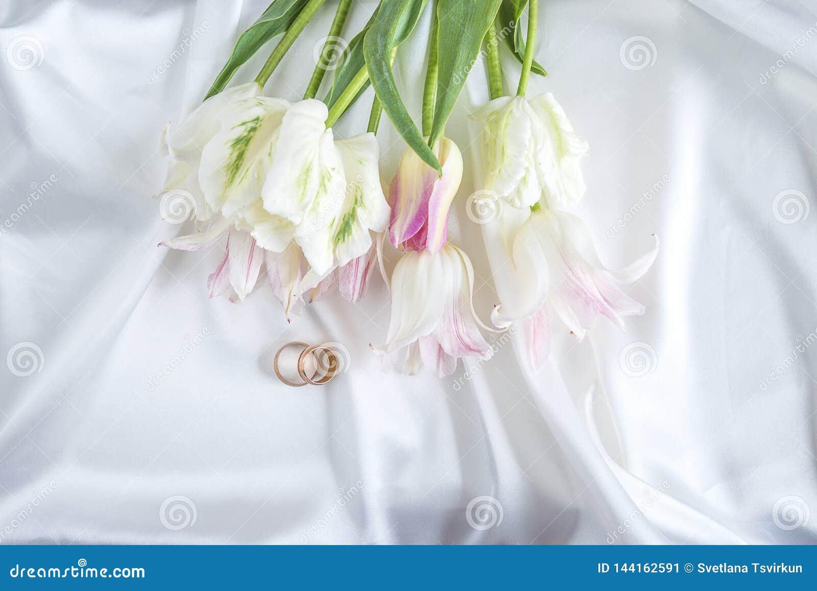 Dos anillos de bodas y ramos de tulipanes blancos