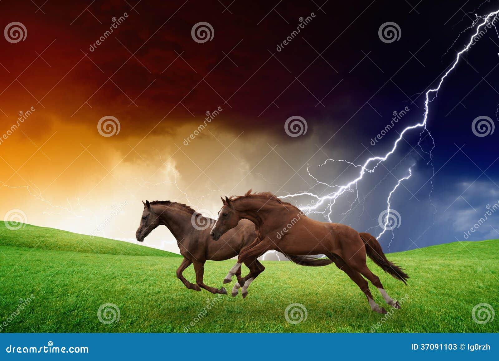 Dos caballos, tormenta del relámpago