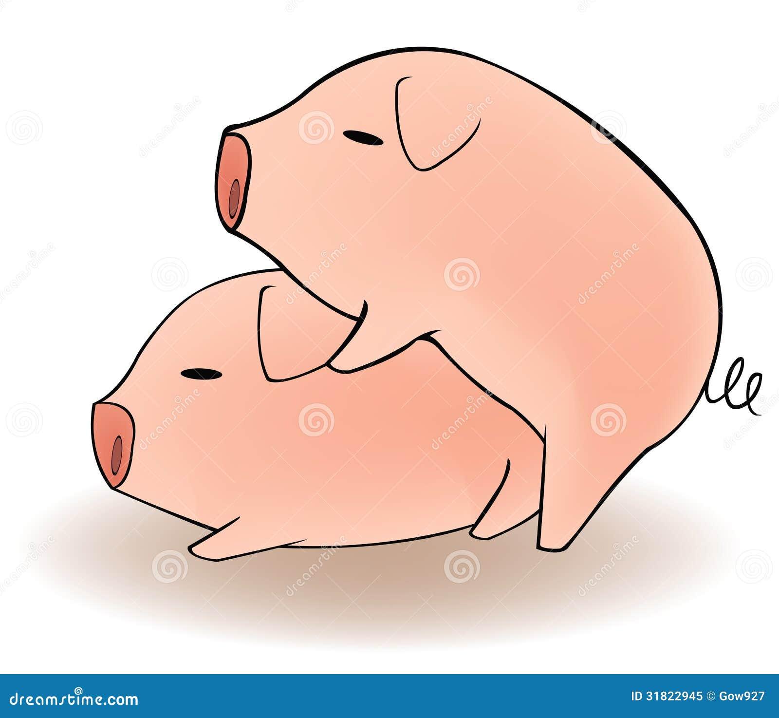 Cintas de sexo de cerdos
