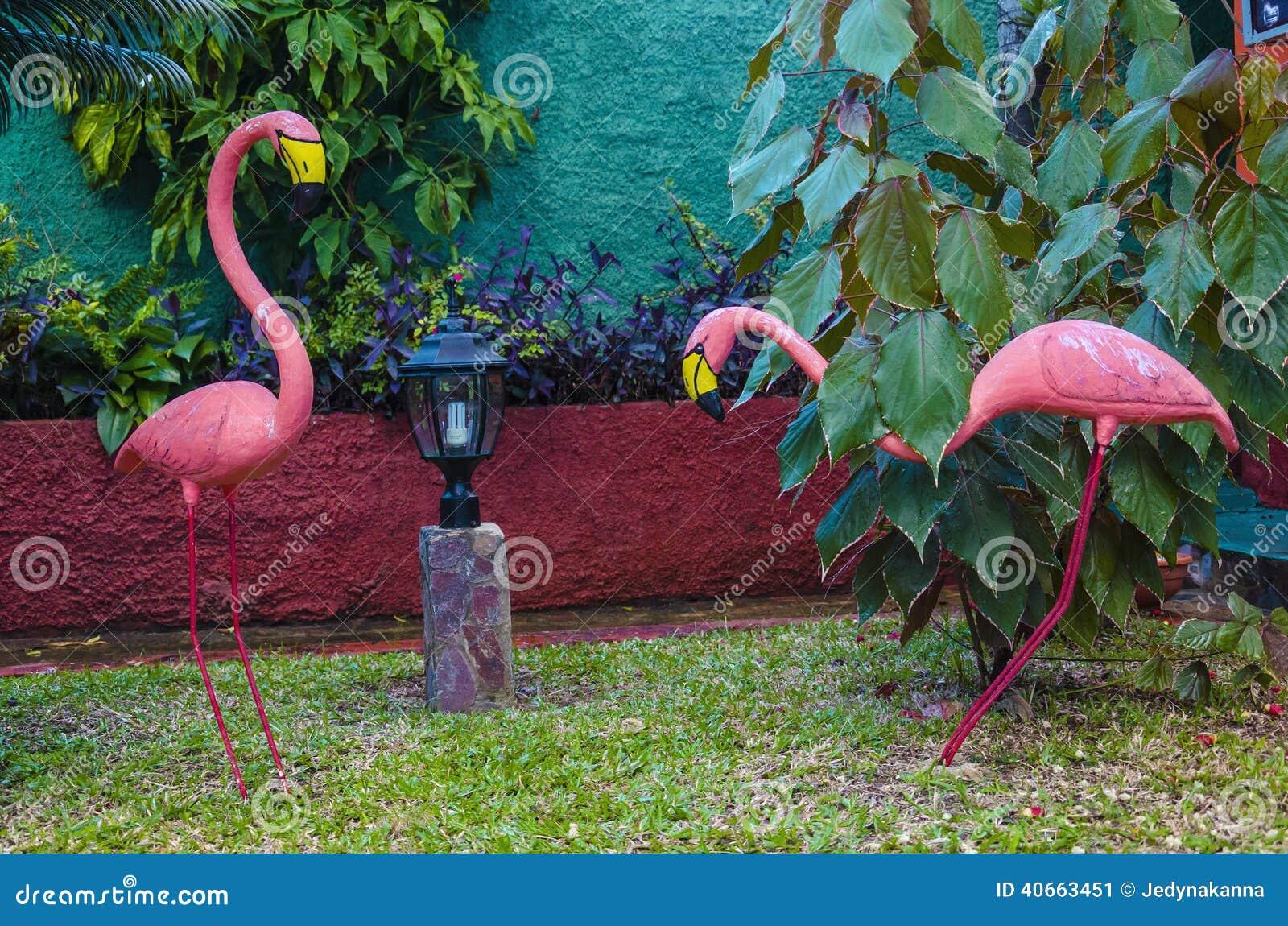 Dos flamencos rosados en uno de los jardines del caribe - Decoracion del jardin ...