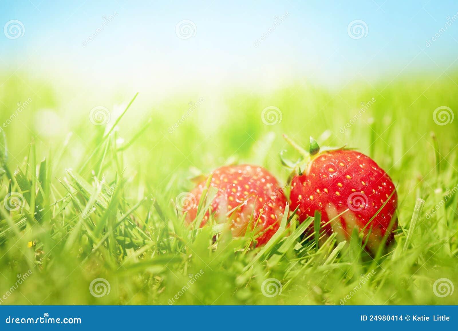 Dos fresas en la hierba