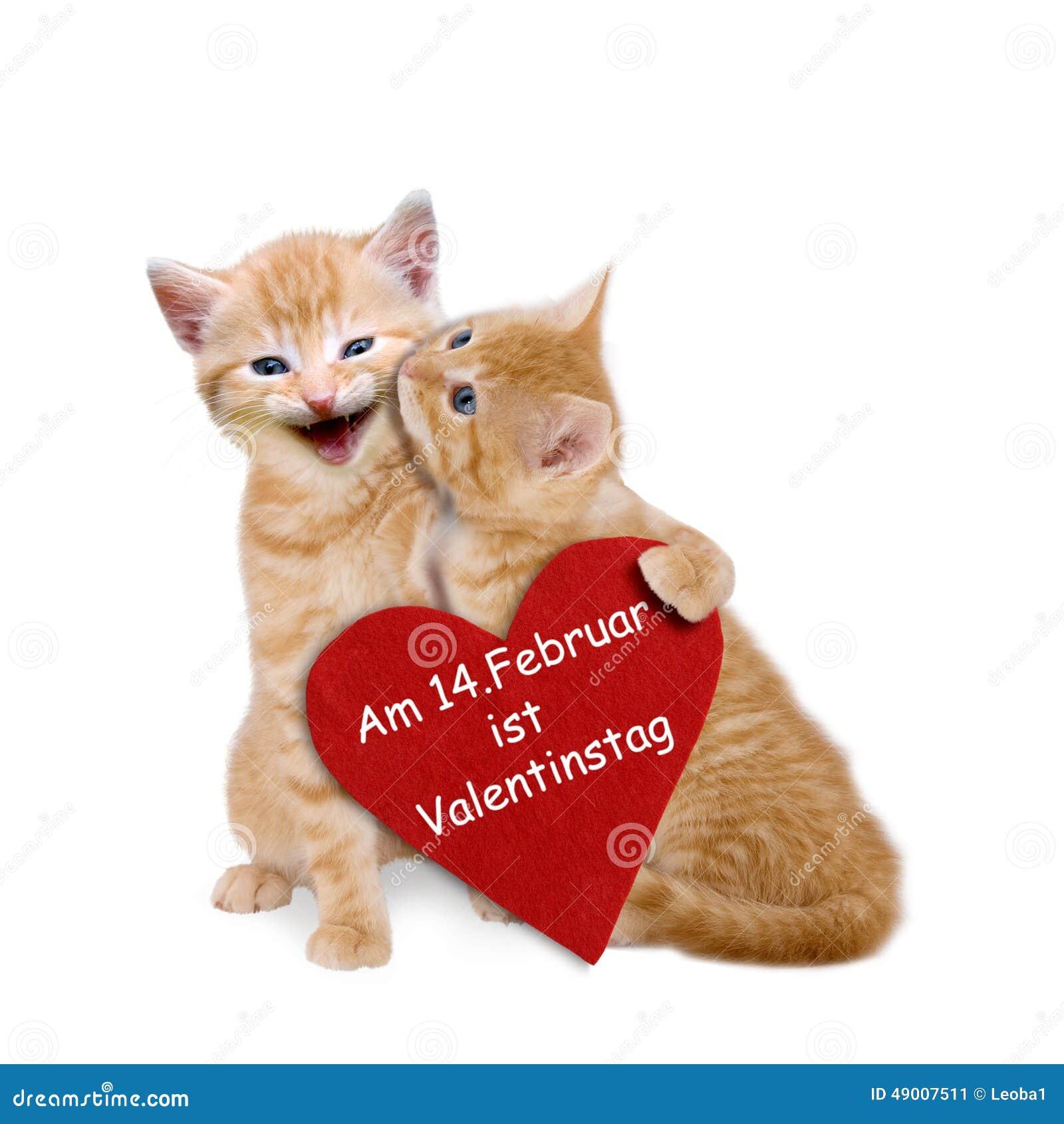 Dos Gatos Enamorados Con El Corazón Rojo En Tarjeta Del Día De San