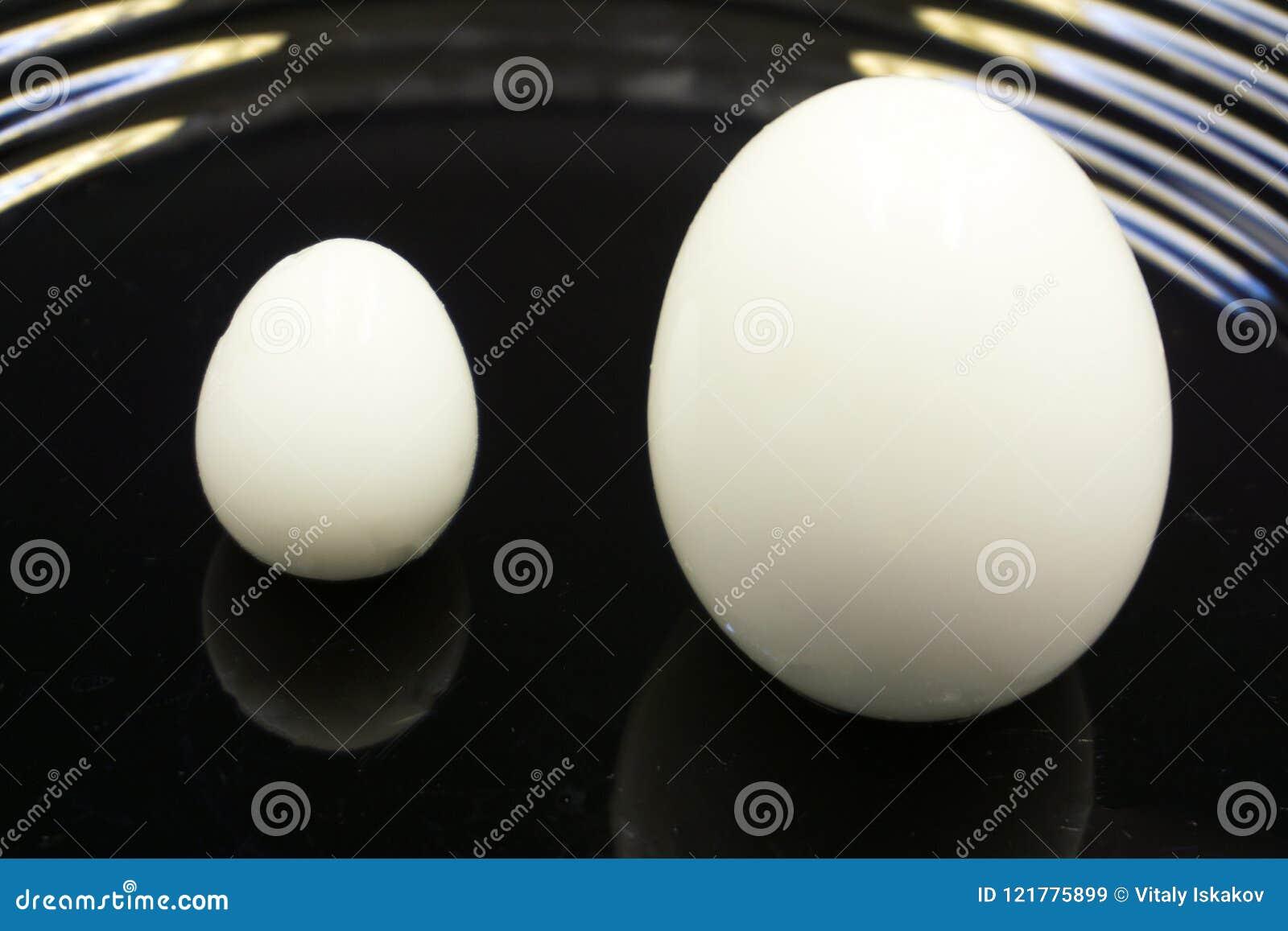 Dos hirvieron los huevos, uno en una huevera blanca con el huevo de la palabra en negro en la taza El otro huevo en la placa de l
